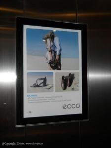 ECCO - 2011